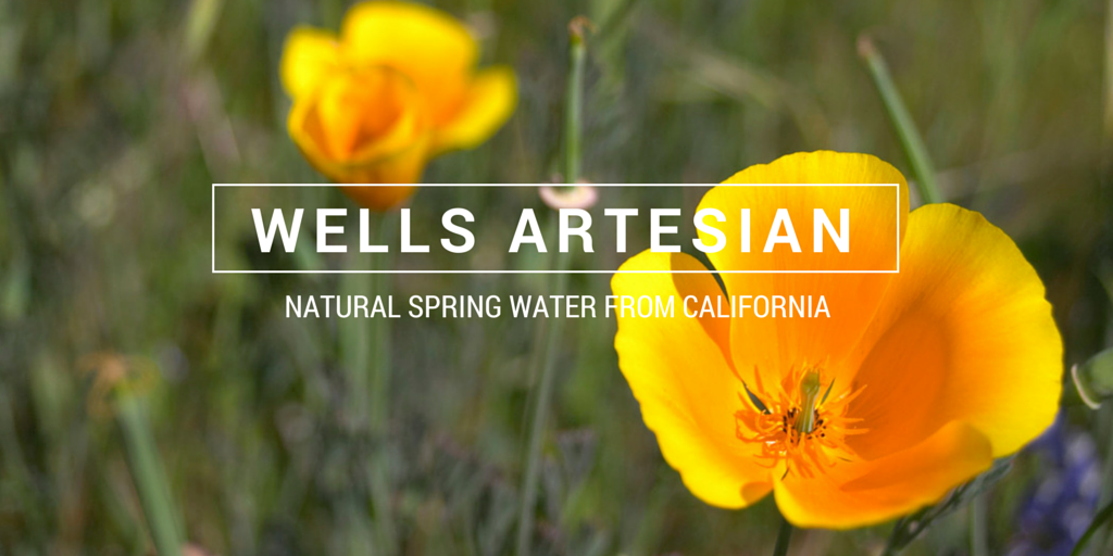 California Artesian Water Project